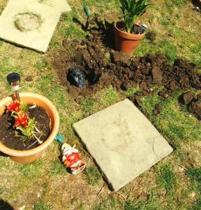 The guns were found under a paving slab surrounded by garden gnomes